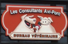 Les Consultant Avi-Porc – Enseigne sculpté