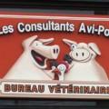 consultant_avi-porc
